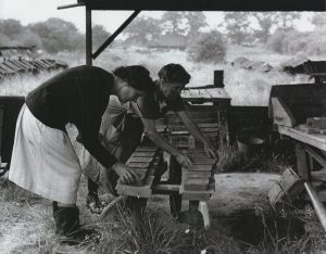 Hilda and Nina Wilks place green briquettes onto a barrow for transfer to the hackyard, 1960, © Eden Valley Museum Trust